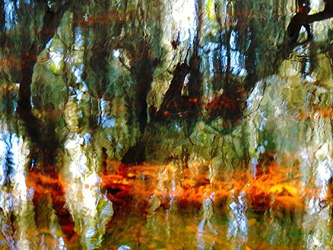 UIndy Emeriti show - Lake Alice Reflection - Donna Adams - web