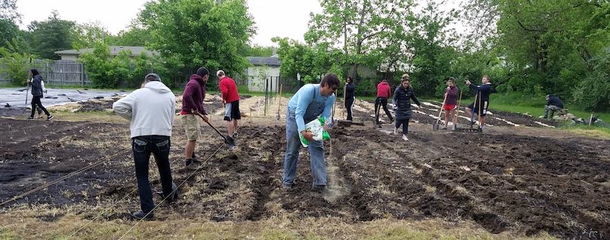 Community garden May 2019